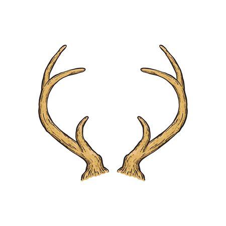 Hand drawn deer horns isolated on white Stock Illustratie