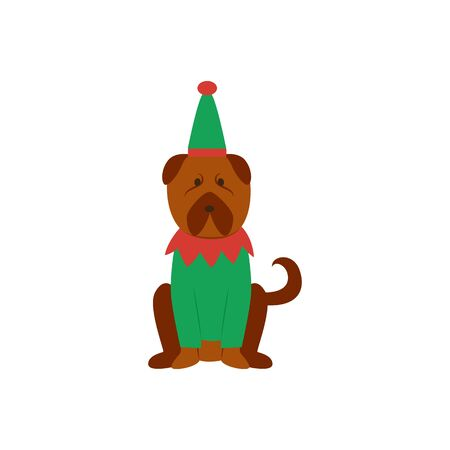 Funny dog or puppy in Christmas Elves green suit, full body flat isolated on white