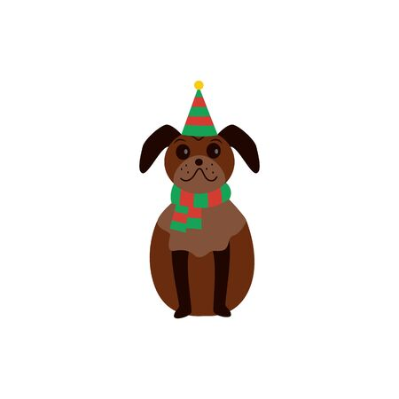 Cute brown pug stands in a Christmas striped hat, concept of celebrating Christmas and New Year.