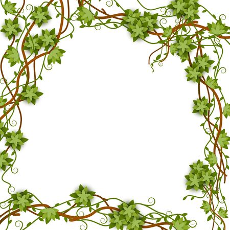 Square jungle frame with vines and empty space inside. Green vine and jungle liana, plant frame and border. Stock Illustratie