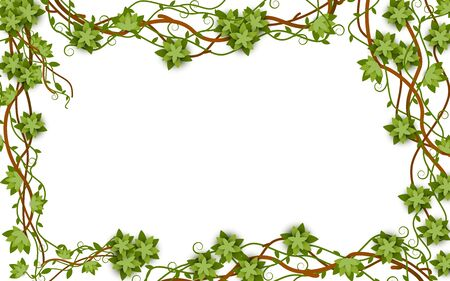Rectangular jungle frame with vines, lianas and blank space inside
