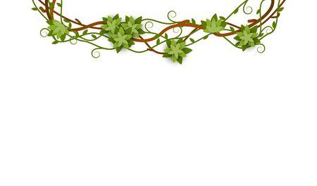 Element ozdobnego obramowania tropikalnej dżungli lub zielonego pnącza liany z utkanymi i pięknie skręconymi liśćmi Ilustracje wektorowe