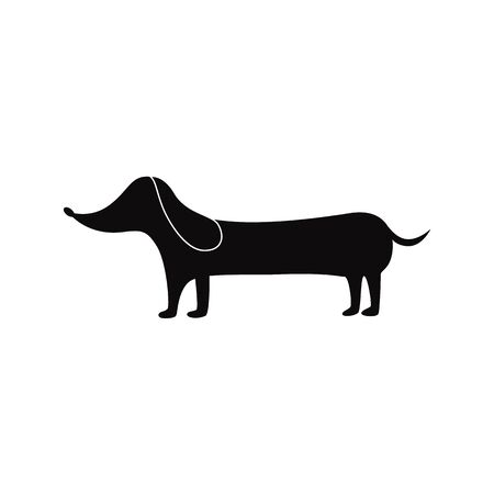 A dog of breed a dachshund with a long body is standing.