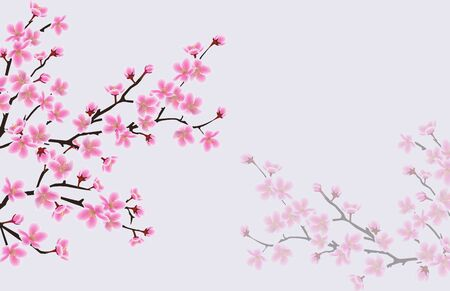 Background with blooming pink cherry or japanese sakura branches and flowers hand drawn vector illustration. Beautiful floral design element for cards and invitations.