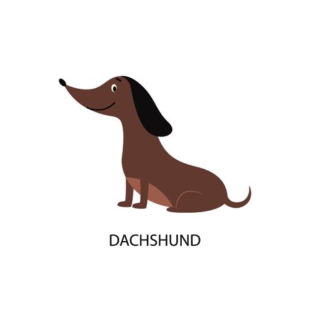 Cartoon dachshund dog isolated on white background - cute brown pet animal sitting and smiling, hand drawn flat vector illustration of friendly purebred sausage puppy Illustration
