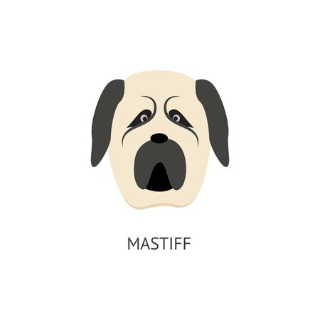 Cartoon mastif dog head isolated on white background - grey and white pet animal looking surprised. Cute drawing of big dog with funny facial expression - vector illustration. Illustration