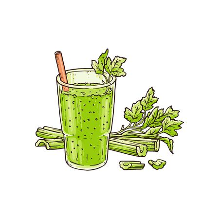Celery smoothie in glass - healthy green blended vegetable drink for summer detox or vitamin nutrition with straw and leaf garnish. Isolated flat drawing vector illustration. 向量圖像