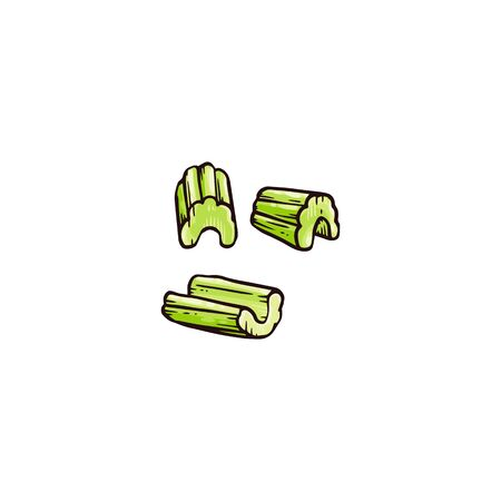 Hand drawn pieces of celery cut up in small portions - raw green plant sticks chopped up for cooking or healthy nutrition snack, Isolated flat vector illustration. 向量圖像