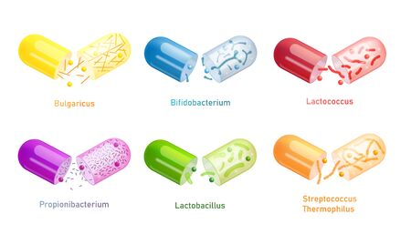 Colorful probiotic bacteria capsule set isolated on white background - open plastic pill with different types of probiotics. Medical vector illustration.
