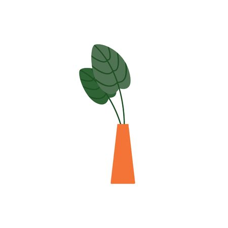 Indoor house plant with big leaves in vase or pot single icon, flat vector illustration isolated on white background. Flowers breeding at home hobby and lifestyle. Standard-Bild - 134855110