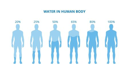 Water in human body - health poster with cartoon people with bodies on different percentage of hydration filled with blue liquid. Flat isolated vector illustration