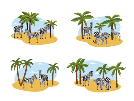 Zebras in wildlife at palms and african landscape backdrop, flat cartoon vector illustrations set isolated on white background. Wild animals in nature collection.