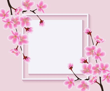 Sakura tree flowers around blank square frame - beautiful ad banner or invitation template with cherry blossom branches, modern floral greeting card background - vector illustration