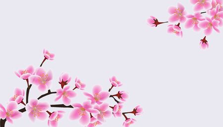 Cherry blossom sakura tree banner with blank copy space. Empty text template with pink flower twigs arranged diagonally across corners - isolated vector illustration Vecteurs