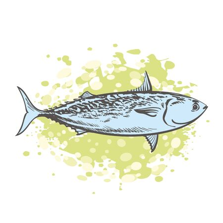 vector sketch sea tuna fish on abstract green splash. Hand drawn seafood delicacy, restaurant and marine cuisine cafe menu decoration design. Underwater ocean animal, healthy gourmet food.