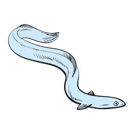 Vector illustration of blue eel fish in sketch style isolated on white background. Hand drawn raw european eel - marine wild edible animal for seafood restaurant or market design.