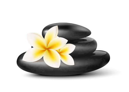 Stack of SPA massage stones and exotic flower, realistic vector illustration isolated on white background. Mockup of elements for relaxing aroma therapy procedure.