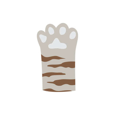 Cute grey cat paw with brown stripes - doodle drawing of feline animals foot with little toe beans. Flat vector illustration isolated on white background.