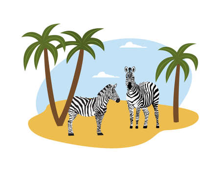 Couple of zebras on savanna landscape layout with palm trees, flat vector illustration isolated on white background. African wild animal character in zoological banner. Иллюстрация