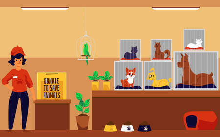 Volunteer collect donations for an animal shelter, flat vector illustration. Interior background of pets shelter with animals and employee cartoon characters. Illusztráció