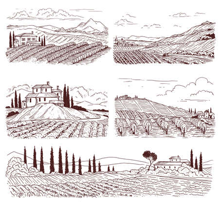 Vineyard landscapes set of hand drawn in black line vector illustrations isolated on white background. Engraved sceneries of vine fields and vinery farms.