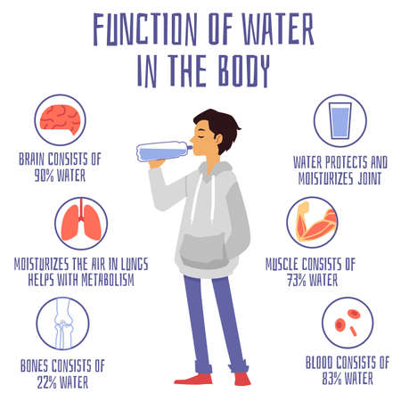 Medical banner with information about function and benefits of water. Man drinking water from bottle, water balance and percentage in organs of human body. Vector flat illustration Vektoros illusztráció