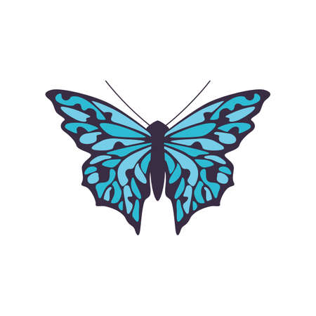 Icon of a simple black butterfly with a blue pattern on wings. Beautiful flying insect. Flat isolated vector illustration for logo or emblem.