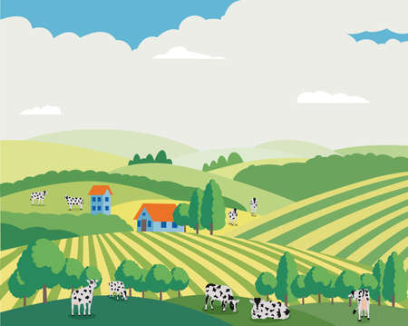 Cartoon cows grazing in summer field - summer landscape of farm animals eating grass on meadow hills pasture, vector illustration of rural cattle in countryside .