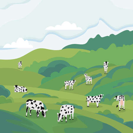 Cows eating grass on summer pasture landscape. Green meadow with farm animals pasturing and feeding on grassy hills, vector illustration of livestock in nature.