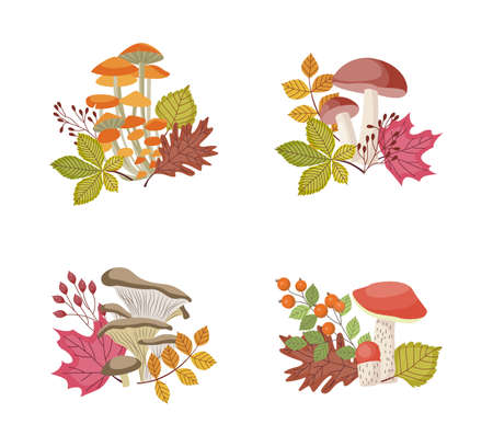 Decorative compositions set with forest mushrooms and autumn leaves, flat vector illustration isolated on white background. Autumn season nature bouquets with mushrooms. Çizim