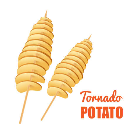 Tornado potato on wooden stick, fried crispy spiral chips a vector illustration.