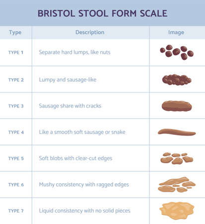 Bristol stool form scale infographic with faeces type flat vector illustration.