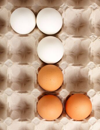 White and brown eggs lying in lattice photo