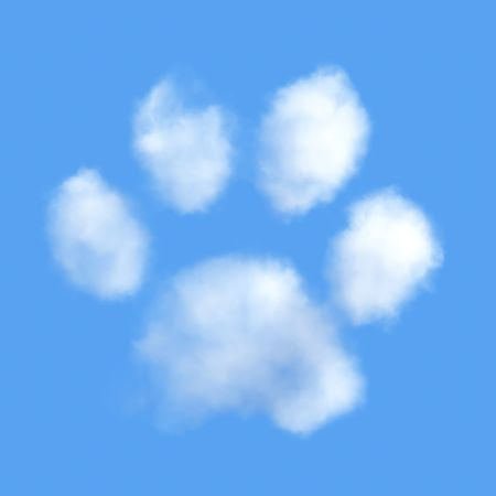 White fluffy clouds in shape of animal paw on the blue sky photo