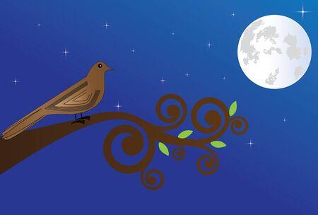 usignolo: Piccolo usignolo canta durante la notte in una luna piena Vettoriali
