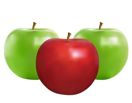 Apple Stock Vector - 7574753