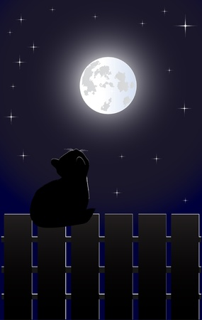Cat on the fence Stock Vector - 9200445
