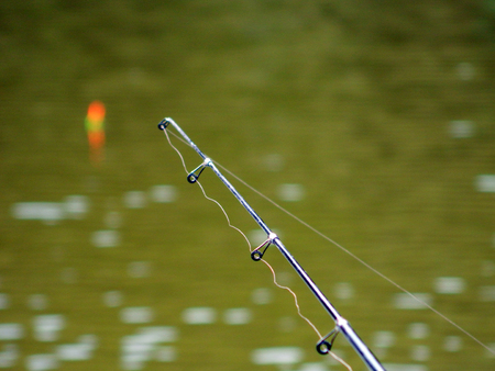 Fishing pole: Fishing pole tip with four rings spread out and cork on lake.