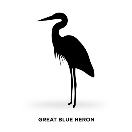 great blue heron silhouette Vector illustration.
