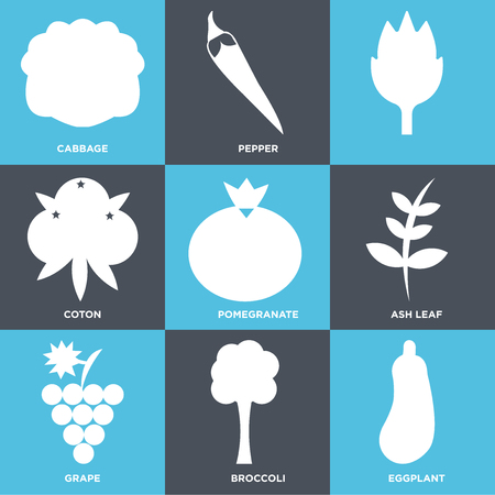 Set Of 9 simple editable icons such as eggplant, broccoli, grape, ash leaf, pomegranate, coton, pepper, cabbage, can be used for mobile, web UI