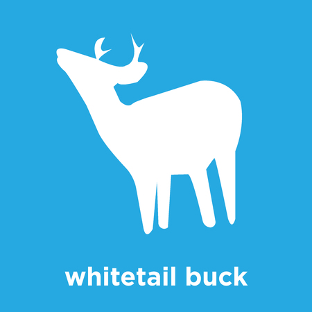 whitetail buck icon isolated on blue background, vector illustration