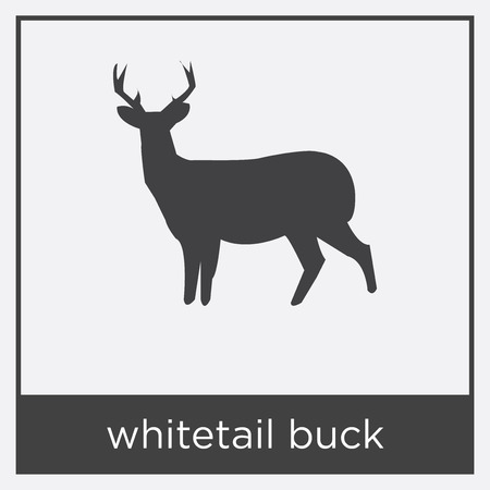 whitetail buck icon isolated on white background with black border Çizim