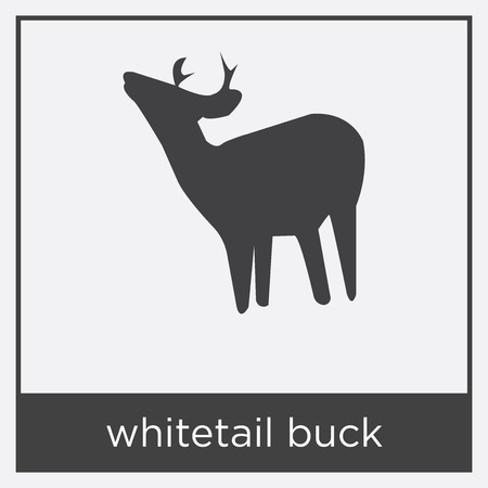 whitetail buck icon isolated on white background with black border Stock Vector - 100488490