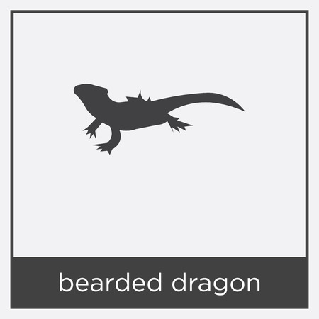 Bearded dragon icon isolated on white background with gray frame, sign and symbol.