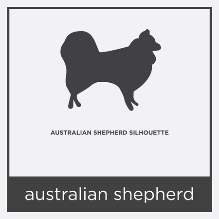 Australian shepherd icon isolated on white background with gray frame, sign and symbol Vettoriali