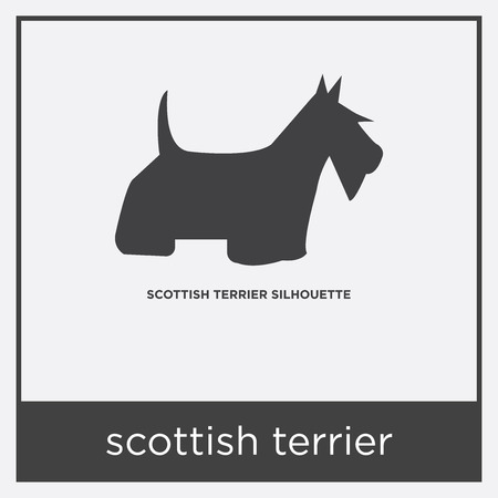 scottish terrier icon isolated on white background with gray frame, sign and symbol