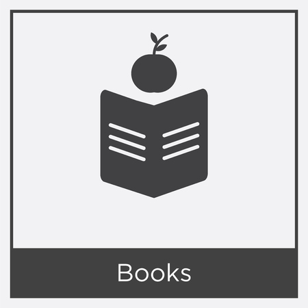 Books icon isolated on white background with gray frame, sign and symbol