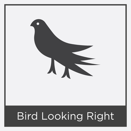 Bird Looking Right icon isolated on white background with gray frame, sign and symbol