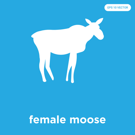 female moose vector icon isolated on blue background, sign and symbol