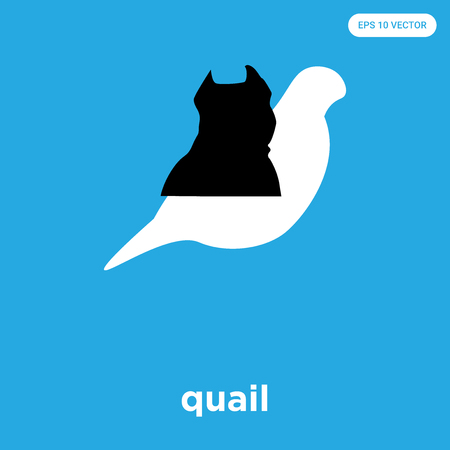 quail vector icon isolated on blue background, sign and symbol